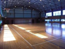 大渡体育館(前橋市)