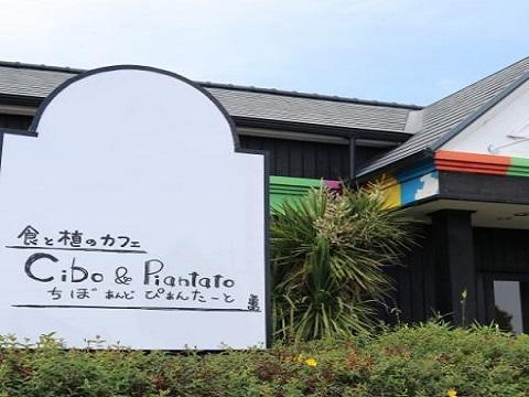 チボ&ピアンタート(藤岡市)
